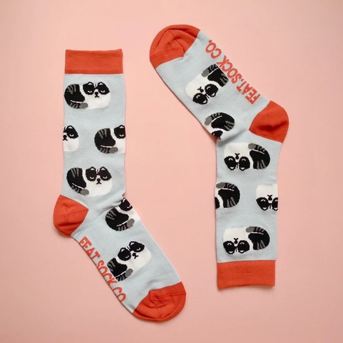 Ladies' Blue/Red grumpy cat socks