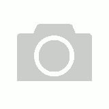 Creatures Of The Order Anura