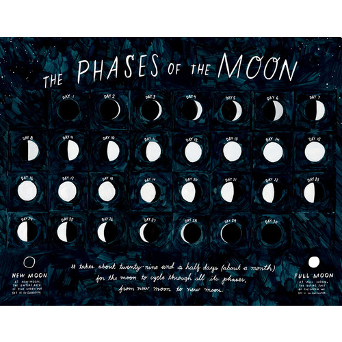Phases of the moon print